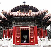 Forbidden City, Beijing, China by DaveLambert