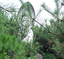 Kwan Yin in the Pines by Shanna Underwood