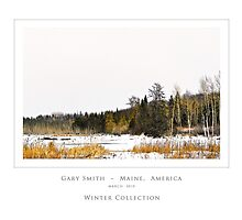 Winter Wilderness Collection by Gary Smith