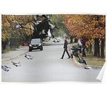 flocking Poster