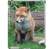 fox sitting iPad Case/Skin