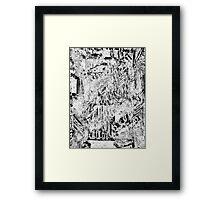 Digi Exp 30 Framed Print