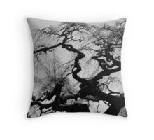 Gnarled Old Tree, Camp Hill Throw Pillow