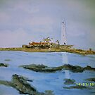 St Mary's Island by GEORGE SANDERSON