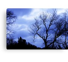 Blue Trees - JUSTART © Canvas Print