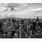 New York Skyline by DamianBrandon