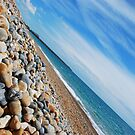 Brighton! by Celia Strainge