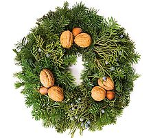 Holiday Evergreen Wreath  by Denise Torres