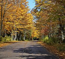 Door County, Wisconsin (Midwest US) by Barb White