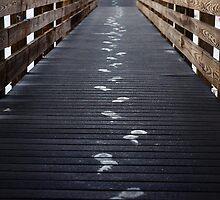 Footprints by nicolet