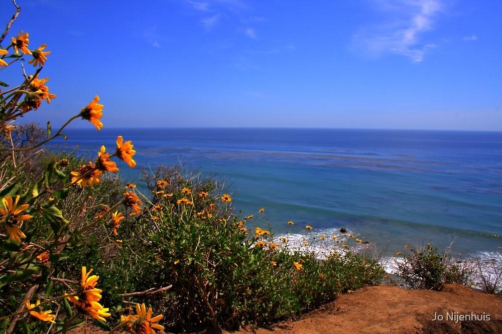Spring at La Piedra State Beach by Jo Nijenhuis