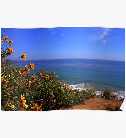 Spring at La Piedra State Beach Poster