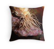 Waving to the fish... Throw Pillow