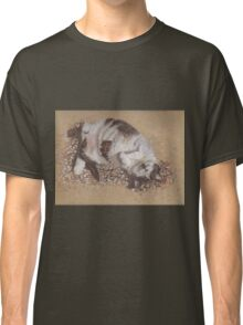 felix catching rays Classic T-Shirt