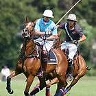 Polo by Mark Greenwood