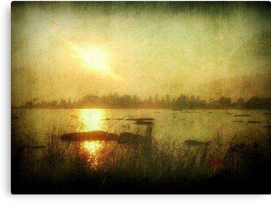 Setting Sun On An Autumn Eve ©  by Dawn M. Becker
