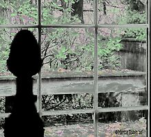 Room with a View by Marcia Rubin