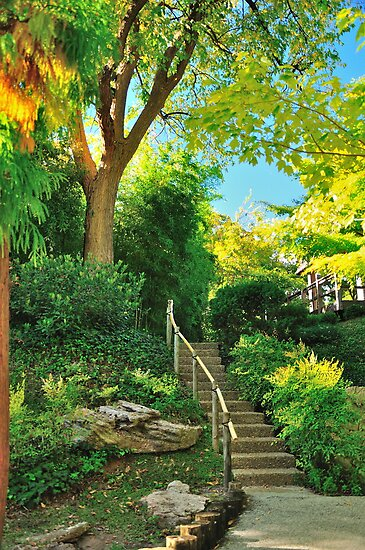 Japanese Gardens Fort Worth Tx Usa By Artcooler Redbubble