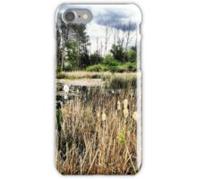 Cattails Surrounding a Swampy Wetland Area iPhone Case/Skin