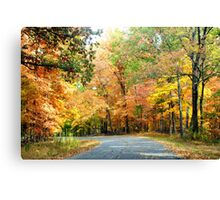 Go Country! Canvas Print