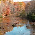 Autumn Creek by teresa731