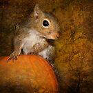 Pumpkin-Eater by kayzsqrlz