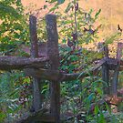 Just an Old Fence by Chelei