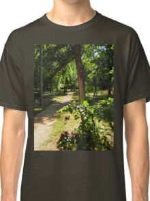 The track in the park and a small bush in the foreground Classic T-Shirt