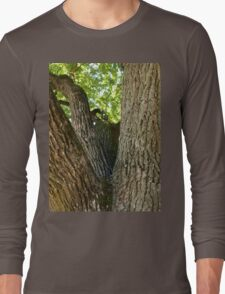 The mighty and powerful oak branches Long Sleeve T-Shirt