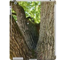 The mighty and powerful oak branches iPad Case/Skin