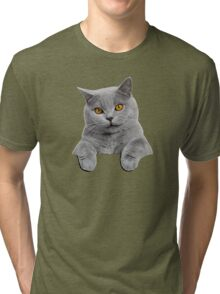 Blue British Shorthair Cat in your pocket! Tri-blend T-Shirt