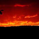 Sky on Fire by SamTheCowdog