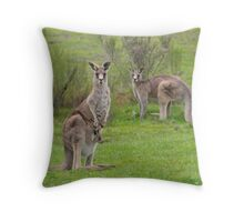 The Kangaroos of Hill End NSW Throw Pillow