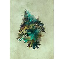 Tree - Fractal Art Photographic Print