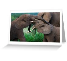 Test Of Strength     Signed Greeting Card
