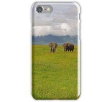 Ngrongoro Elephants-Signed iPhone Case/Skin