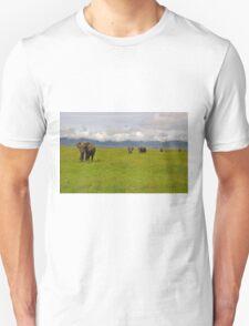 Ngrongoro Elephants-Signed T-Shirt
