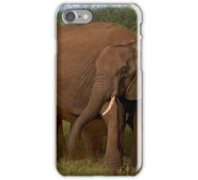 In Close For The Evening-Signed iPhone Case/Skin