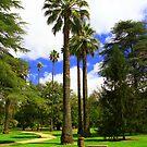 Botanic Gardens, Albury. by Petehamilton