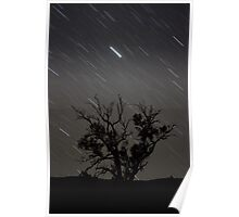 Star Trails - Telowie Gorge Poster