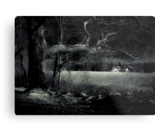 Night Walk by Witch Hollow Farm Metal Print