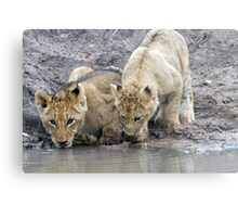 Drinking With A Friend Metal Print