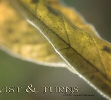 TWISTS & TURNS © by Vicki Ferrari