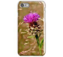 Knapweed II iPhone Case/Skin