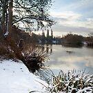 Winter on the Thames, Desborough Island by Rachael Talibart