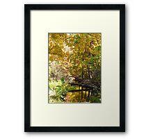 The silence of Fall Framed Print