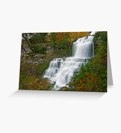 Overview in Autumn - Chittenango Falls Greeting Card