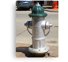 Green Top Fire Hydrant Canvas Print