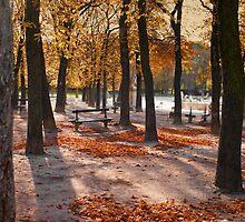 Autumn in Paris by Laurent Hunziker