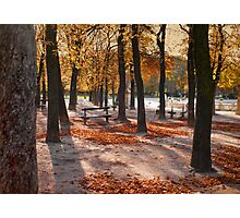 Autumn in Paris Photographic Print